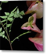Zen Of Nature 4 Metal Print
