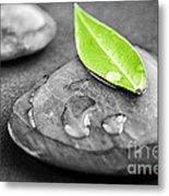 Zen Stones Metal Print by Elena Elisseeva