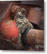 Zerk Metal Print by The Stone Age