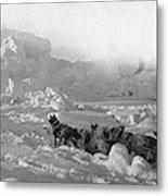 Ziegler Polar Expedition Metal Print