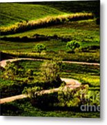 Zigzags Of A Path Metal Print