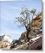Zion National Park 1 Metal Print