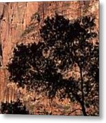 Zion National Park Canyon Walls With Silhouetted Trees In Front  Metal Print