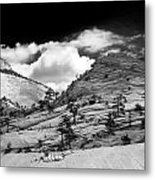 Zion National Park In Black And White Metal Print
