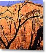 Zion Tree Metal Print