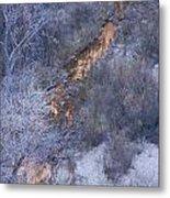 Zion's National Park Reflection Metal Print