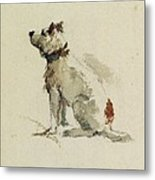A Terrier - Sitting Facing Left Metal Print by Peter de Wint