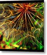 Dandelion Dreamtime Metal Print