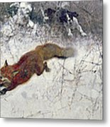 Fox Being Chased Through The Snow  Metal Print by Bruno Andreas Liljefors