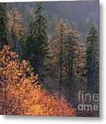 Great Smoky Mountains Morning Metal Print
