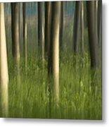 Green Alameda  Metal Print