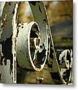 Iron Gate Metal Print by Jacqui Collett