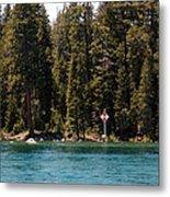 Lake Tahoe Sugar Pine Point Light Metal Print