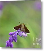 Little Skippers Happy Place Metal Print