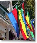 Olcott Flags  7183 Metal Print