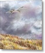 Seagull Flying Over Dunes Metal Print
