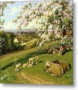 Spring - One Of A Set Of The Four Seasons  Metal Print
