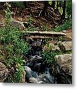 Stream In Tall Pines Metal Print