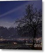 Tree And Snow-capped Mountain Metal Print