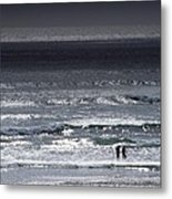 Wading In The Water Metal Print