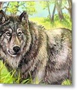 Wolf Summer Metal Print