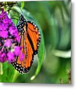001 Making Things New Via The Butterfly Series Metal Print