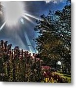 003 Summer Sunrise Series Metal Print