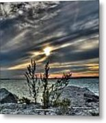 004 In Harmony With Nature Series Metal Print