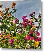 004 Summer Air Series Metal Print