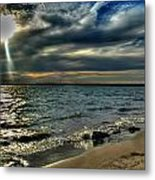 009 In Harmony With Nature Series Metal Print