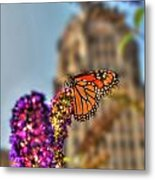 010 Making Things New Via The Butterfly Series Metal Print