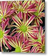 015 Pink And Yellow Flowers Metal Print