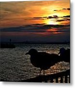 015 Sunset Series Metal Print