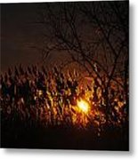 06 Sunset Metal Print