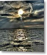 007 In Harmony With Nature Series Metal Print