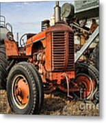 A Case Of Old Age Metal Print
