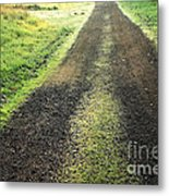A New Day A New Life Metal Print