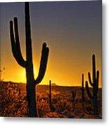 A Saguaro Sunrise  Metal Print