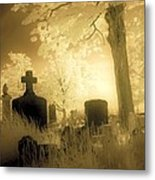 Abandoned And Overgrown Cemetery Metal Print
