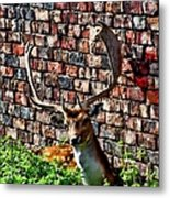 Against The Wall Metal Print