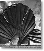 Aldeburgh Scallop Metal Print