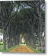 Alley . Provence Metal Print