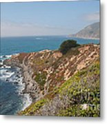 Along Big Sur Metal Print