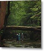 Amish Creek Hike Metal Print