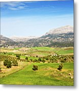 Andalusia Landscape In Spain Metal Print