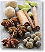 Assorted Spices Metal Print by Elena Elisseeva