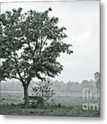 August In England Metal Print