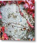 Autumn 16 Metal Print by Elena Mussi