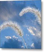 Autumn Breeze Metal Print