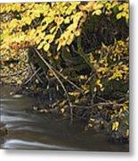 Autumn Flow Metal Print